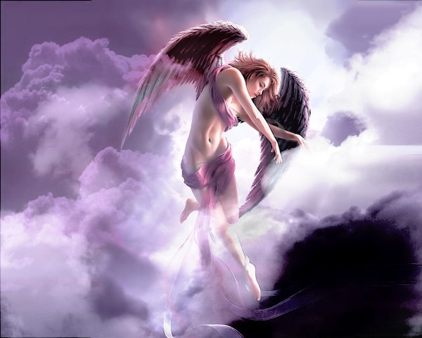 dans fond ecran ange violet 7b7ed4fd